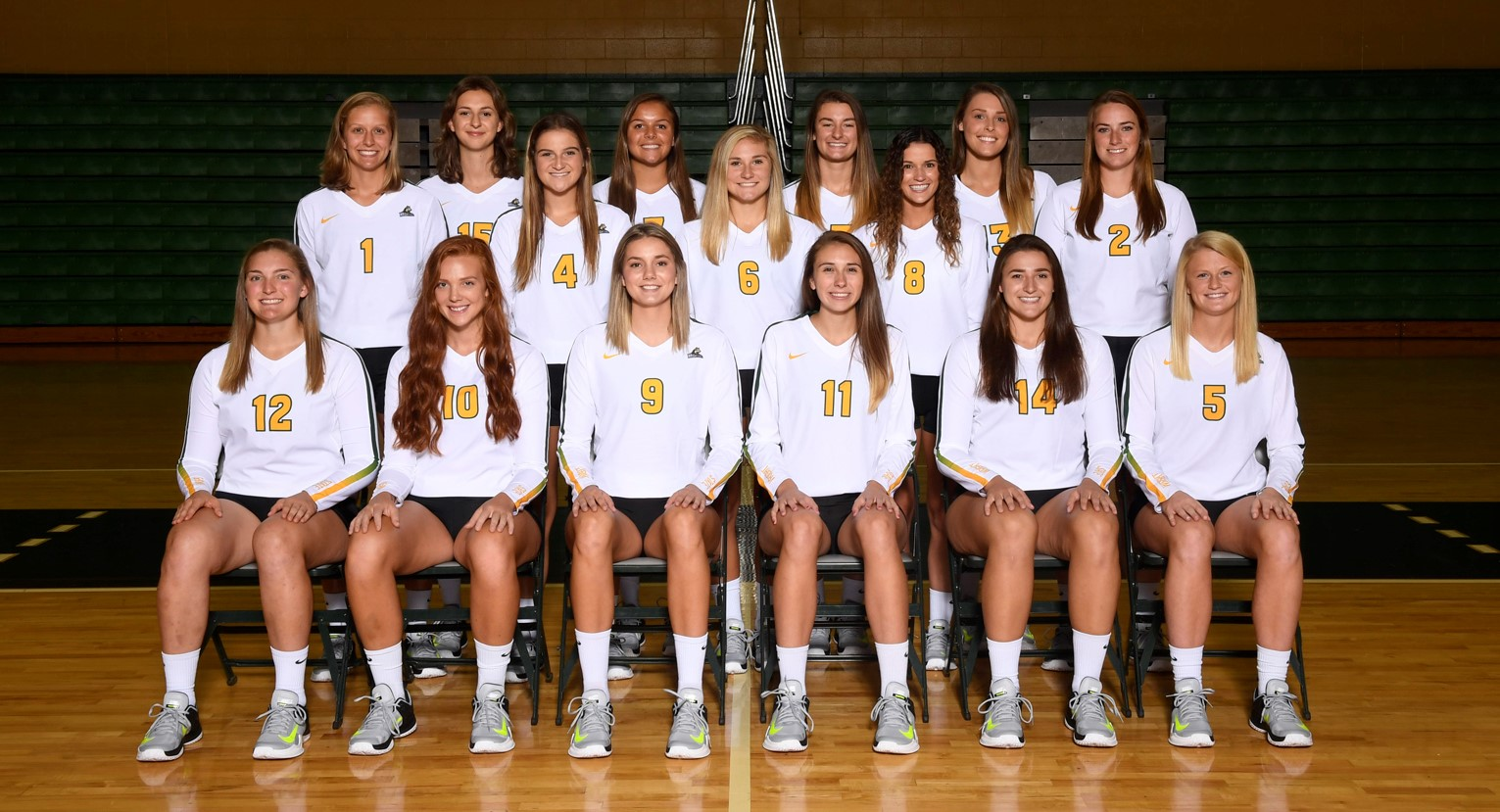2017 Women S Volleyball Roster Wright State University Athletics